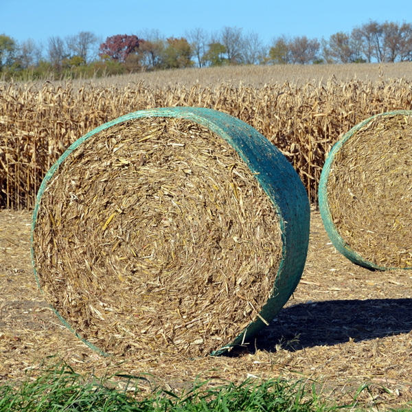 silage cover net